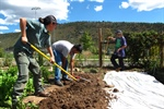 Sustaibably cultivating a garden: a student's guide to growing their own food